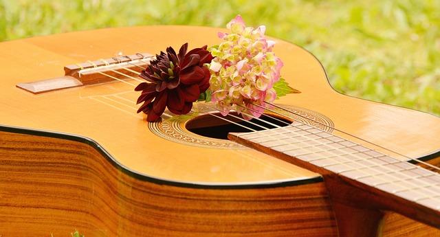 kytara a květina